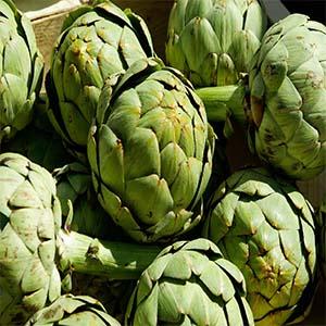 Alcachofas verduras de temporada en otoño