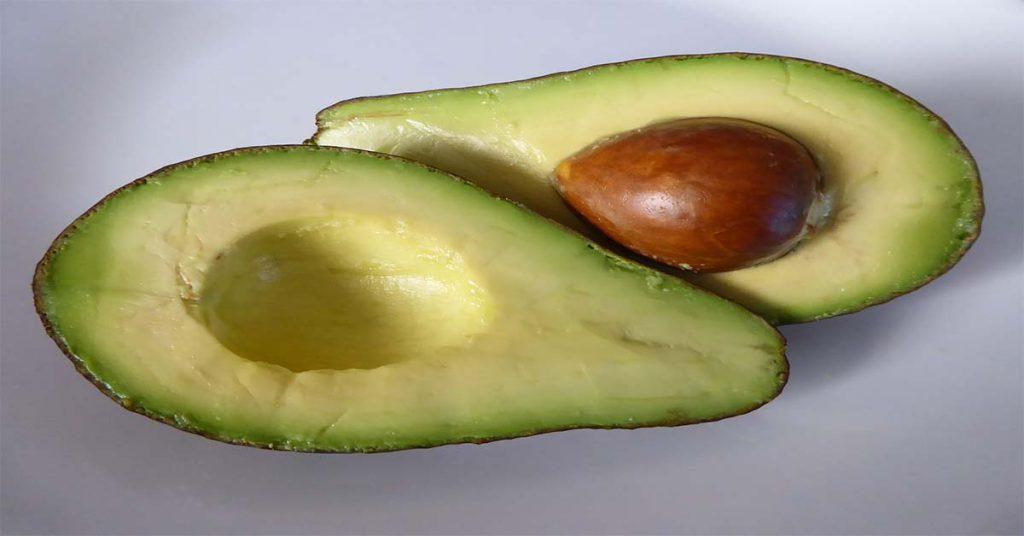 aguacate alimentos precolombinos