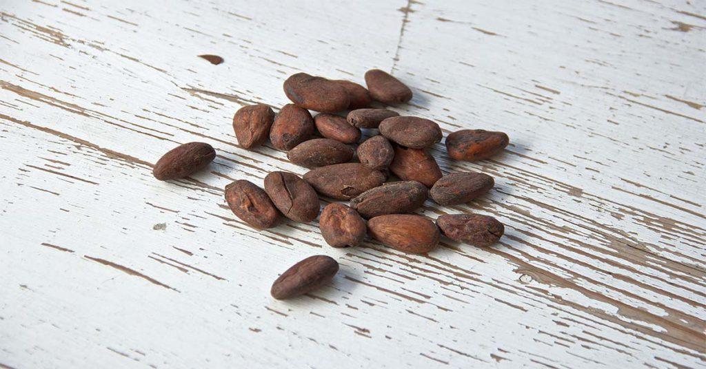 cacao alimentos precolombinos