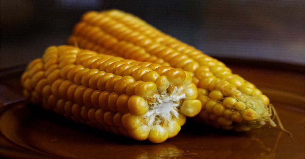 maiz alimentos precolombinos
